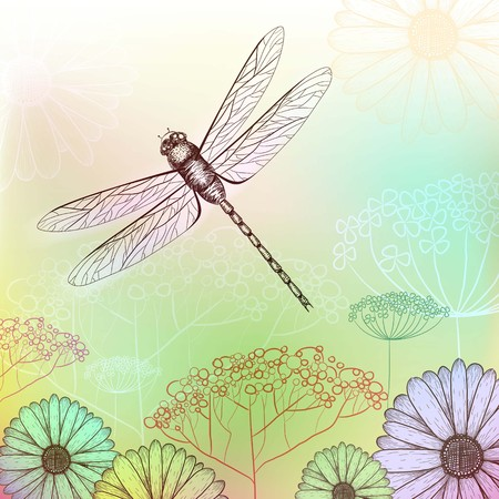 Summer nature background with dragonfly