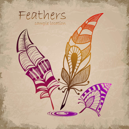 Set of decorative feathers Stock Vector - 76353076