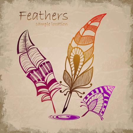 Set of decorative feathers