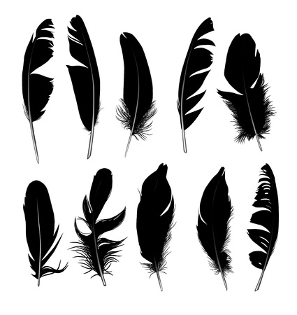 bristles: Set of feathers Silhouette