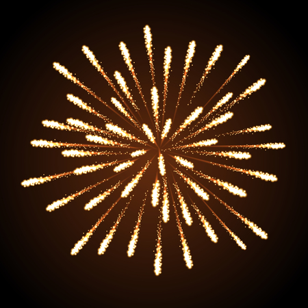 Vector holiday firework. Independence day