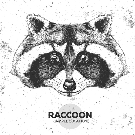 Hipster animal raccoon. Hand drawing Muzzle of animal raccoon illustration. Illustration