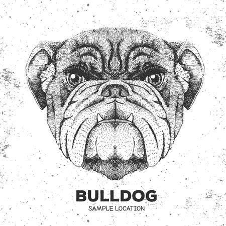 Hipster animal bulldog. Hand drawing Muzzle of animal dog illustration.