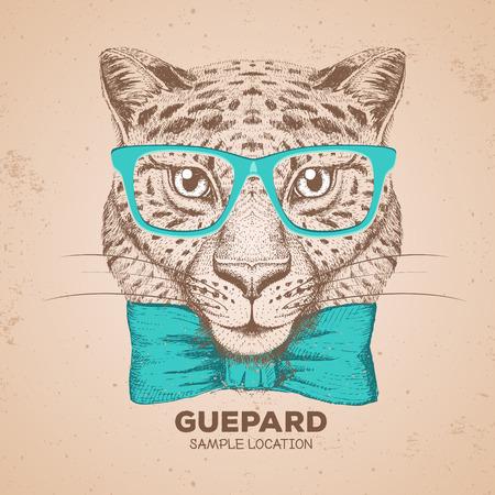 Hipster animal cheetah. Hand drawing Muzzle of cheetah 矢量图像