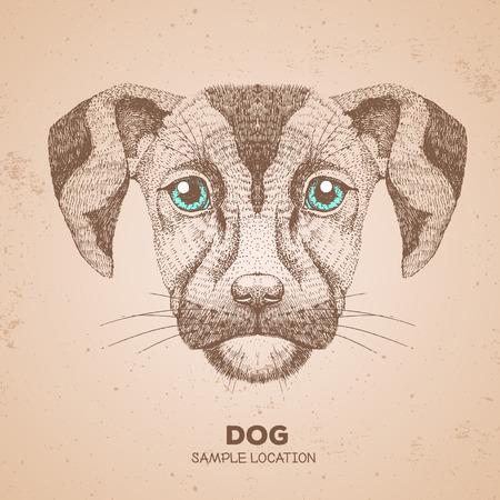 Hipster animal dog. Hand drawing Muzzle of dog 矢量图像