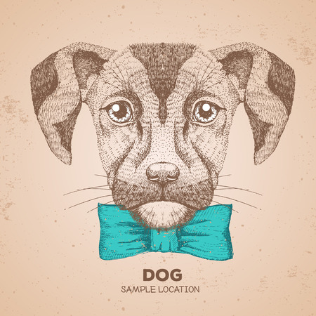 Hipster animal dog. Hand drawing Muzzle of dog Ilustrace