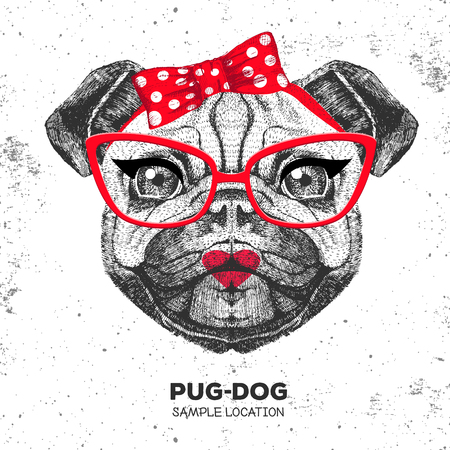 Retro Hipster animal pug-dog. Hand drawing Muzzle of animal pug-dog. Girl of 60s