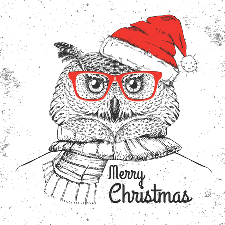 Christmas Hipster fashion bird owl dressed A New Year hat and scarf