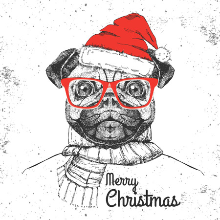 Christmas Hipster fashion animal pug-dog dressed a New Year hat and scarf Çizim