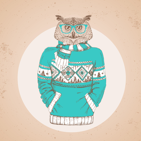 Retro Hipster fashion animal owl dressed up in pullover. Hipster animals Zdjęcie Seryjne - 101248595
