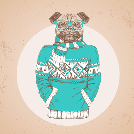 Retro Hipster fashion animal pug-dog dress up in pullover. Hipster animals