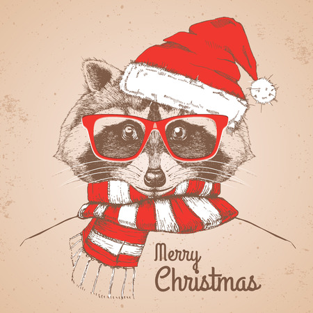 Christmas Hipster fashion animal raccoon dress a New Year hat and scarf