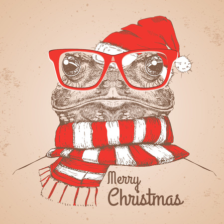 Christmas Hipster fashion animal frog dressed a New Year hat and scarf