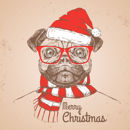 Christmas Hipster fashion animal pug-dog dressed a New Year hat and scarf Stock Illustratie
