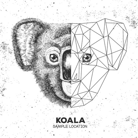 Hipster animal realistic and polygonal koala face