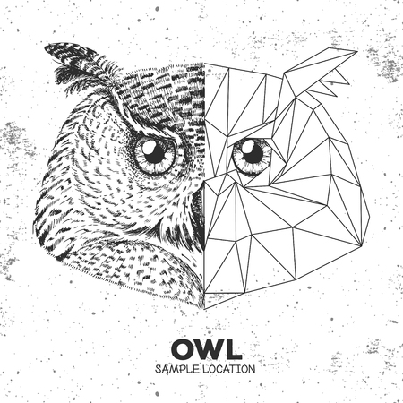 Hipster animal realistic and polygonal owl face
