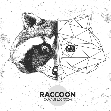 Hipster animal realistic and polygonal raccoon face Stock Illustratie