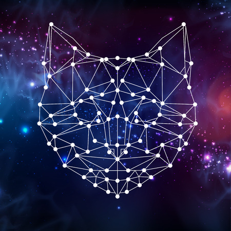 Abstract polygonal tirangle animal cat on open space background. Hipster animal illustration.