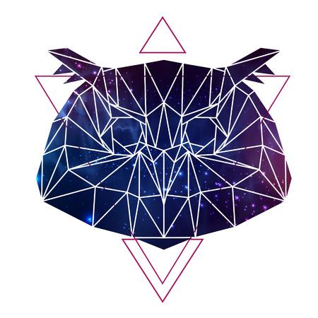 Abstract polygonal tirangle animal owl with open space background. Hipster animal illustration. Illusztráció