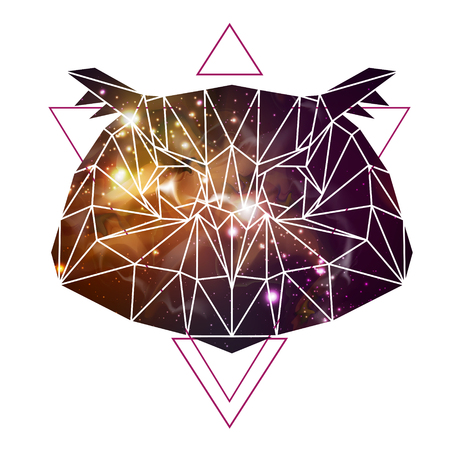 Abstract polygonal tirangle animal owl on open space background. Hipster animal illustration. Illusztráció
