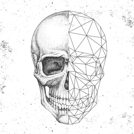 Hipster realistic and polygonal skull on grunge background