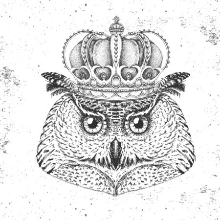 Hipster bird owl in crown. Hand drawing Muzzle of bird owl