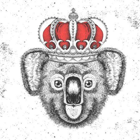 Hipster animal koala in crown. Hand drawing Muzzle of koala