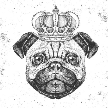 Retro Hipster animal pug-dog in crown. Hand drawing Muzzle of pug-dog