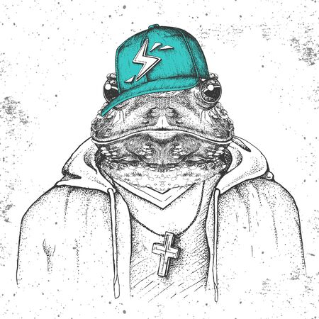Hipster animal frog dressed in cap like rapper. Hand drawing Muzzle of frog