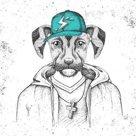 Hipster animal dog dressed in cap like rapper. Hand drawing Muzzle of dog
