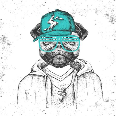 Hipster animal pug-dog dressed in cap like rapper. Hand drawing Muzzle of pug-dog Illusztráció