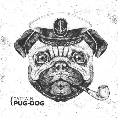 Hipster animal pug dog captains cap and smoking pipe. Hand drawing Muzzle of pug dog  イラスト・ベクター素材