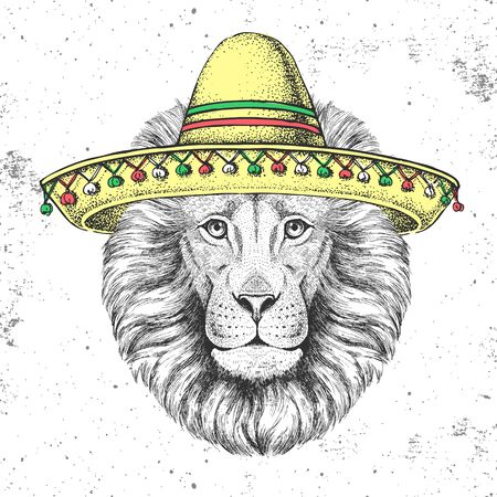 Hipster animal lion wearing a sombrero hat. Hand drawing Muzzle of lion