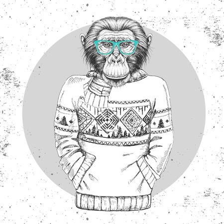 Retro Hipster fashion animal monkey dressed up in pullover.