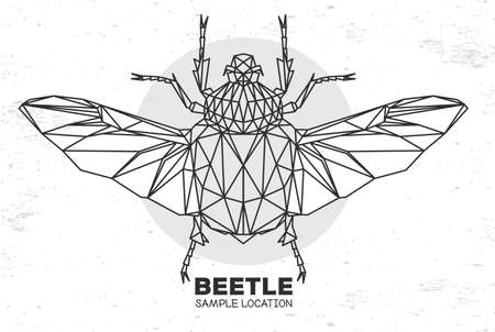 Abstract polygonal triangle Flower chafer beetle on watercolor background. Artistic Bug. Entomological vector illustration