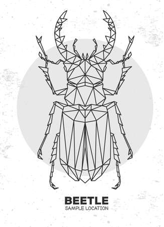 Abstract polygonal triangle stag beetle. Artistic Bug. Entomological vector illustration 矢量图像