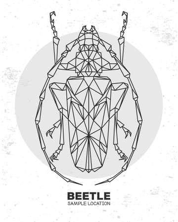 Abstract polygonal triangle longhorn beetle. Artistic Bug. Entomological vector illustration