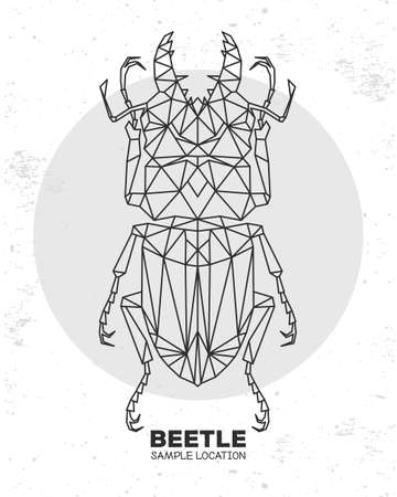 Abstract polygonal triangle beetle. Artistic Bug. Entomological vector illustration