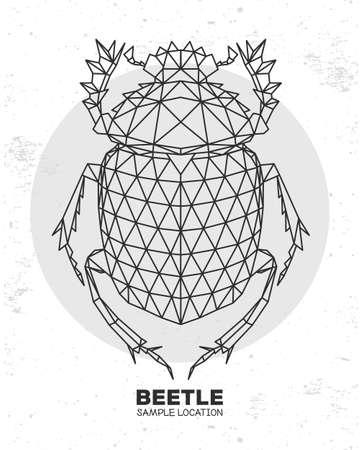 Abstract polygonal triangle Scarabaeus beetle. Artistic Bug. Entomological vector illustration