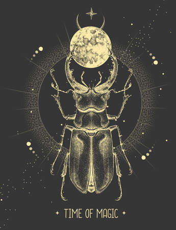 Modern magic witchcraft card with moon and stag beetle. Hand drawing occult vector illustration
