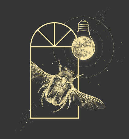 Magic witchcraft window silhouette with Flower chafer beetle and full moon like light bulb. Vector illustration