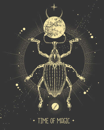 Modern magic witchcraft card with moon and Curculionidae beetle. Hand drawing occult vector illustration Ilustração