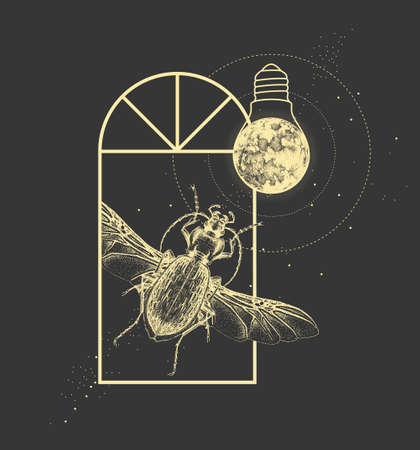 Magic witchcraft window silhouette with ground beetle and full moon like light bulb. Vector illustration Ilustração