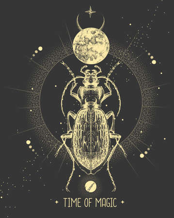Modern magic witchcraft card with moon and ground beetle. Hand drawing occult vector illustration