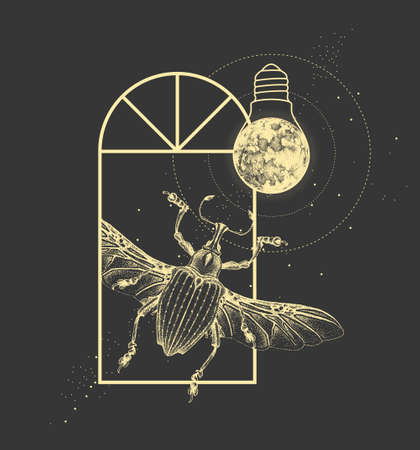 Magic witchcraft window silhouette with Curculionidae beetle and full moon like light bulb. Vector illustration