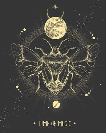 Modern magic witchcraft card with moon and shield beetle. Hand drawing occult vector illustration Ilustração