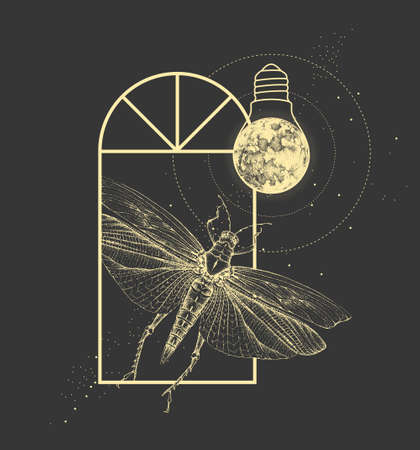 Magic witchcraft window silhouette with grasshopper and full moon like light bulb. Vector illustration Ilustração