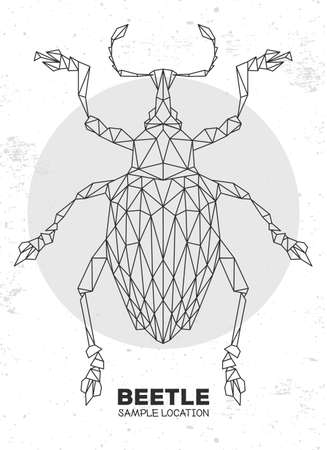 Abstract polygonal triangle Curculionidae beetle. Artistic Bug. Entomological vector illustration