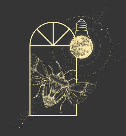 Magic witchcraft window silhouette with shield bug and full moon like light bulb. Vector illustration