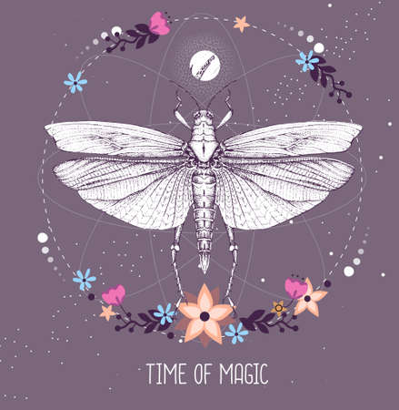 Modern magic witchcraft taros card with grasshopper on astrology background. Vector illustration